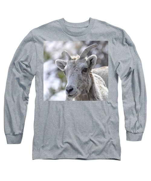 How Close Is Too Close Long Sleeve T-Shirt by Dorrene BrownButterfield