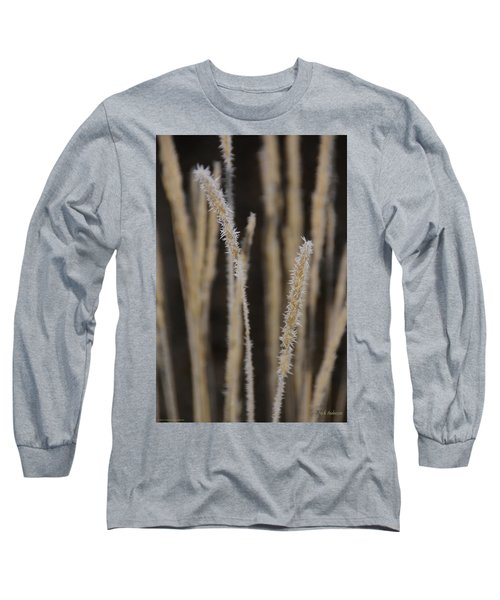 Ice Crystals On Tall Grass Long Sleeve T-Shirt by Mick Anderson