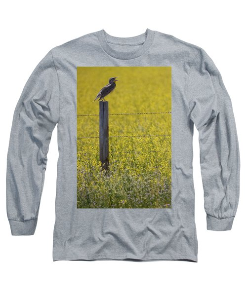 Meadowlark Singing Long Sleeve T-Shirt by Randall Nyhof