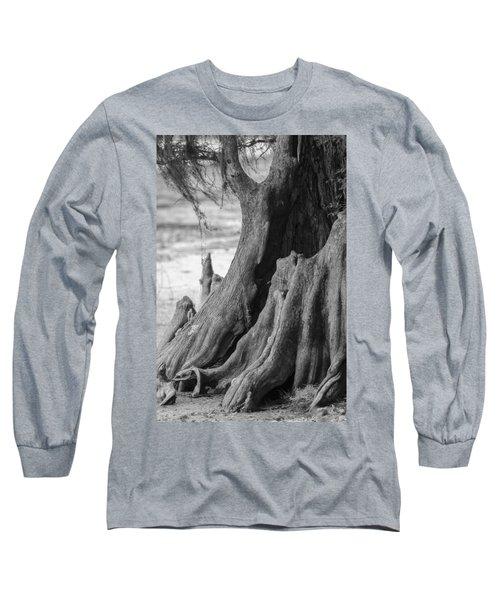 Natural Cypress Long Sleeve T-Shirt