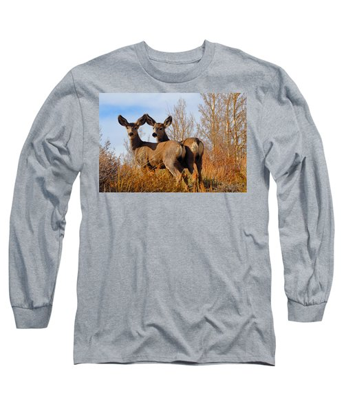 Long Sleeve T-Shirt featuring the photograph Nature's Gentle Beauties by Lynn Bauer