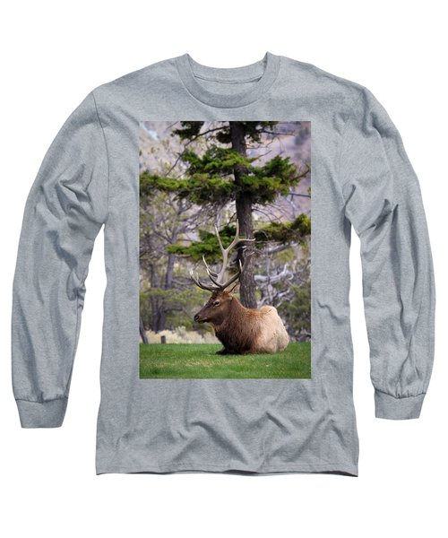 Long Sleeve T-Shirt featuring the photograph On The Grass by Steve McKinzie