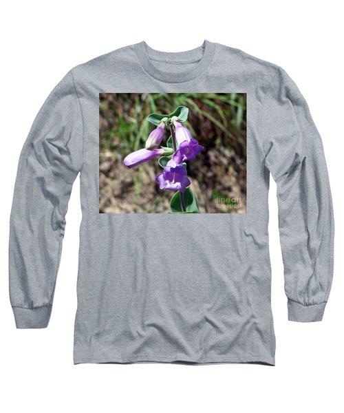 Penstemon Long Sleeve T-Shirt