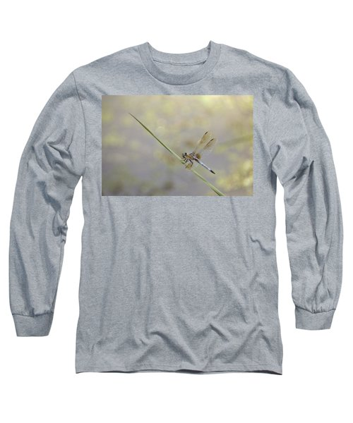 Long Sleeve T-Shirt featuring the photograph Perched Dragon In Sepia by JD Grimes