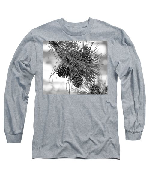 Pine Cones Long Sleeve T-Shirt by Dorrene BrownButterfield