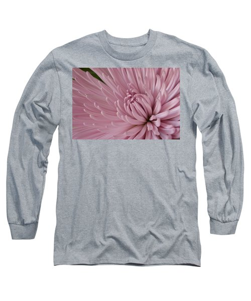 Pretty In Purple 2 Long Sleeve T-Shirt