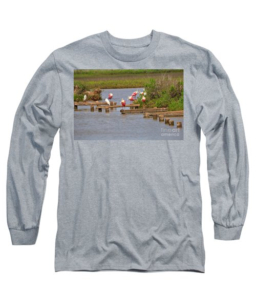 Roseate Spoonbills And Snowy Egrets Long Sleeve T-Shirt by Louise Heusinkveld