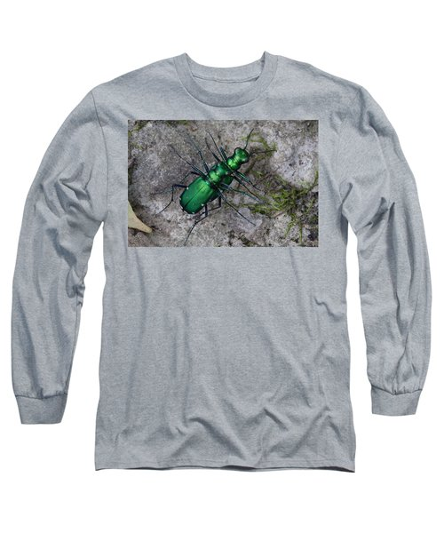 Six-spotted Tiger Beetles Copulating Long Sleeve T-Shirt by Daniel Reed