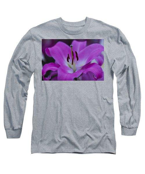Soft Purple Long Sleeve T-Shirt by Maj Seda