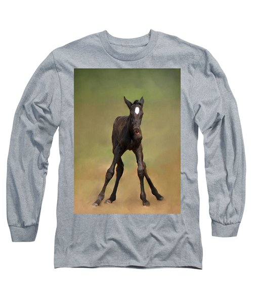 Standing On All Fours Long Sleeve T-Shirt