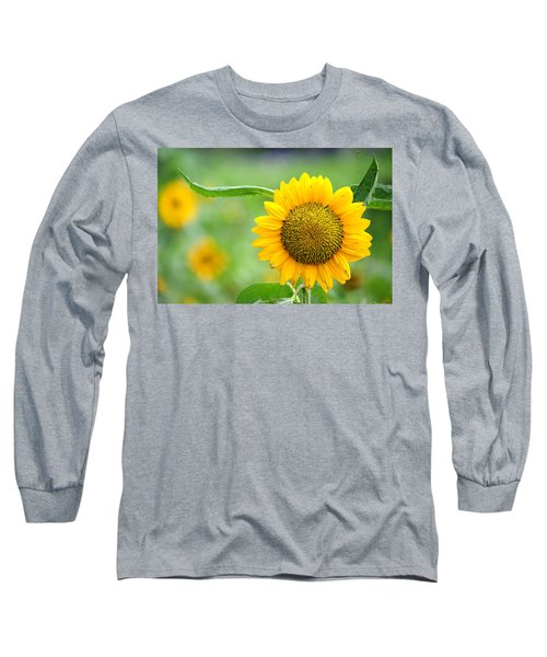 Sunflower Long Sleeve T-Shirt by Yew Kwang