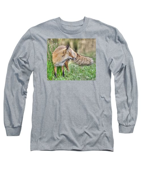 Tail Of The Fox Long Sleeve T-Shirt by CR  Courson