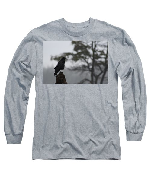 Long Sleeve T-Shirt featuring the photograph The Bachelor by Cathie Douglas