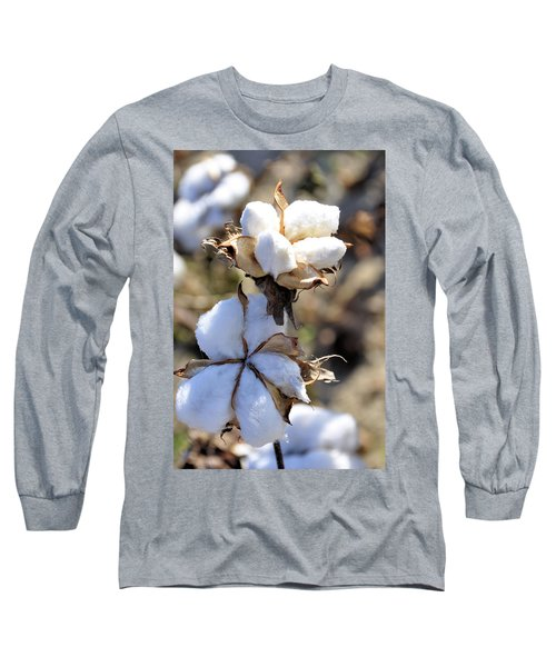Long Sleeve T-Shirt featuring the photograph The Cotton Is Ready by Jan Amiss Photography