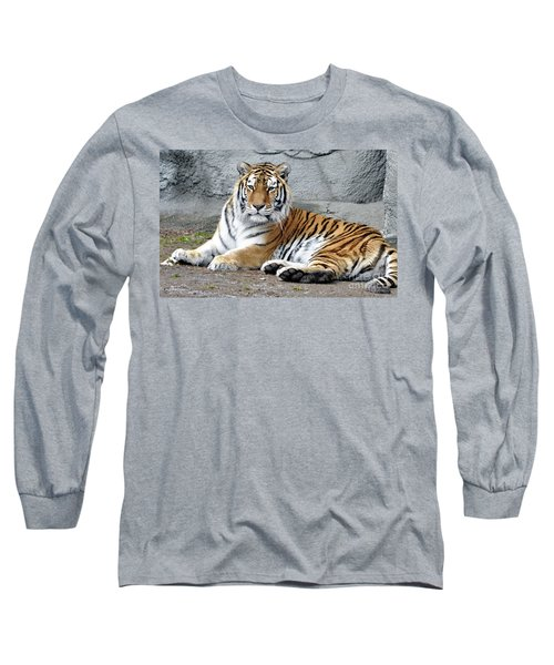 Tiger Resting Long Sleeve T-Shirt