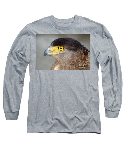 Long Sleeve T-Shirt featuring the photograph Waiting For Prey  by Fotosas Photography
