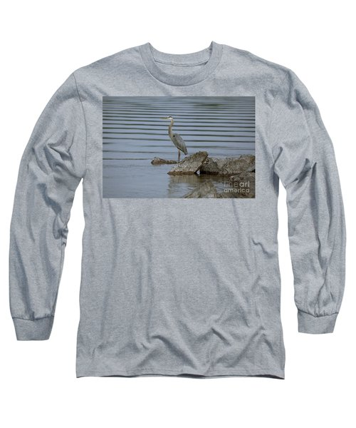 Watchful Long Sleeve T-Shirt by Eunice Gibb