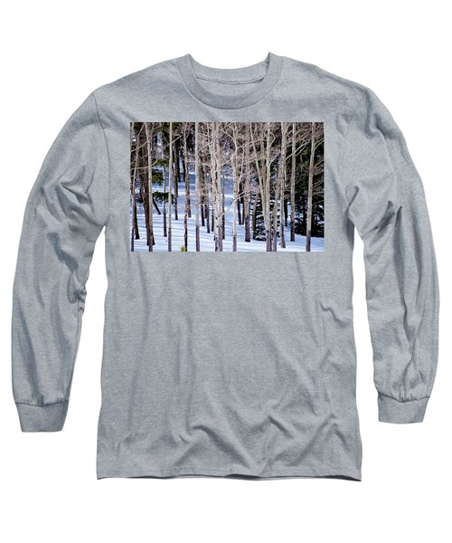Long Sleeve T-Shirt featuring the photograph Winter Aspens by Colleen Coccia