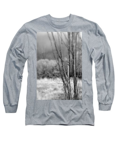 Long Sleeve T-Shirt featuring the photograph Winters Branch by Kathleen Grace