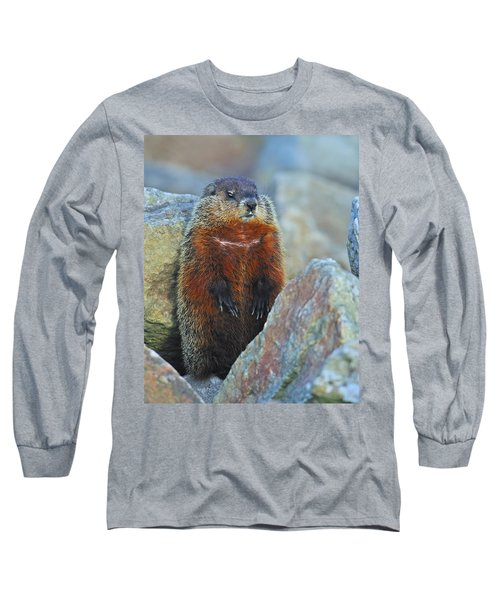 Woodchuck Long Sleeve T-Shirt by Tony Beck