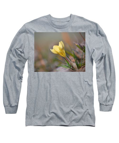 Yellow Crocus Long Sleeve T-Shirt by JD Grimes