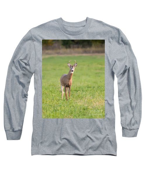 Long Sleeve T-Shirt featuring the photograph Young Buck by Art Whitton