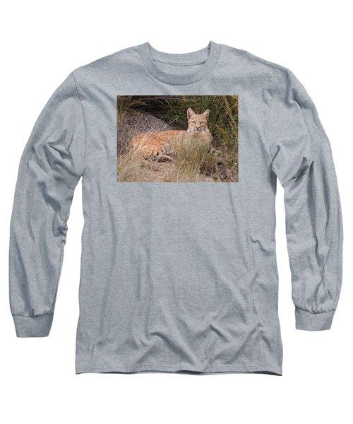 Bobcat At Rest Long Sleeve T-Shirt