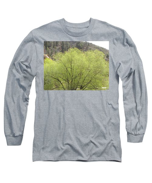 Tree Ute Pass Hwy 24 Cos Co Long Sleeve T-Shirt