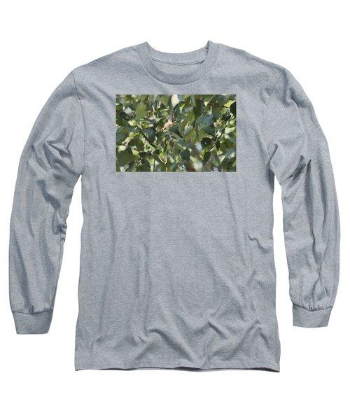 Flight Of The Hummingbird Long Sleeve T-Shirt by Debra     Vatalaro