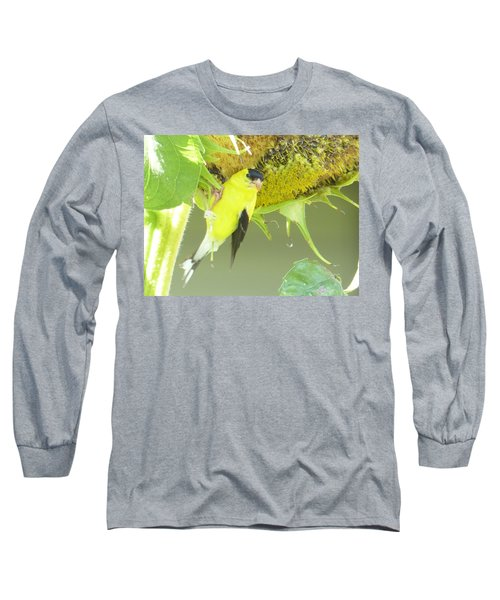 American Goldfinch On Sunflower Long Sleeve T-Shirt