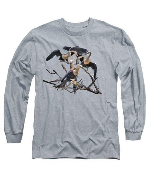 Anhinga Feeding Time Transparency Long Sleeve T-Shirt