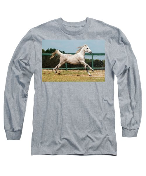 Arabian Horse Running Long Sleeve T-Shirt
