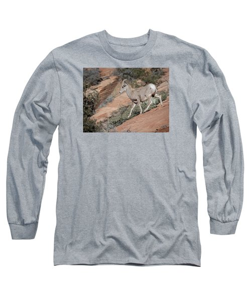 Long Sleeve T-Shirt featuring the photograph Big Horn Sheep by Tyson and Kathy Smith