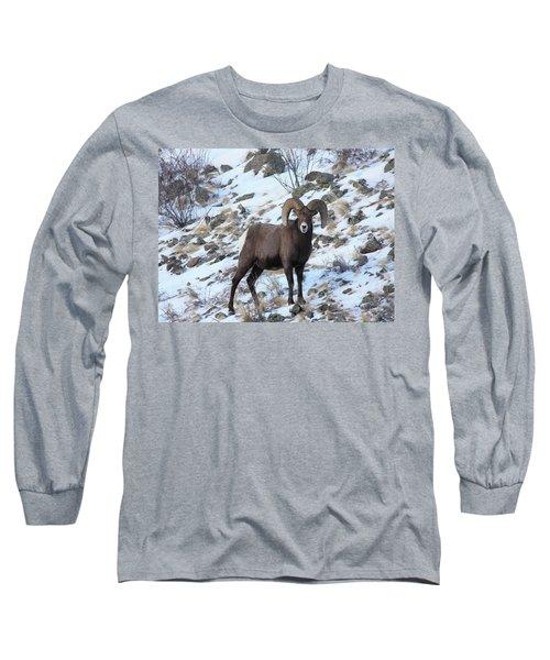 Bighorn7 Long Sleeve T-Shirt