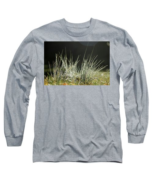 Close-up Of Dew On Grass, In A Sunny, Humid Autumn Morning Long Sleeve T-Shirt