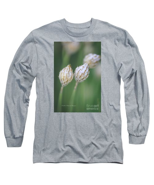 Cupid's Dart Long Sleeve T-Shirt