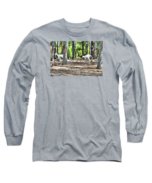 Deer In The Woods Long Sleeve T-Shirt by James Potts