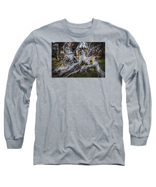 Fallen From Grace Long Sleeve T-Shirt by Mark Lucey