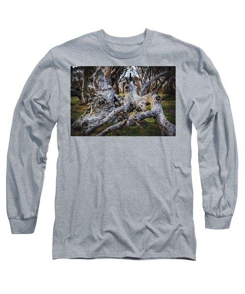 Fallen From Grace Long Sleeve T-Shirt