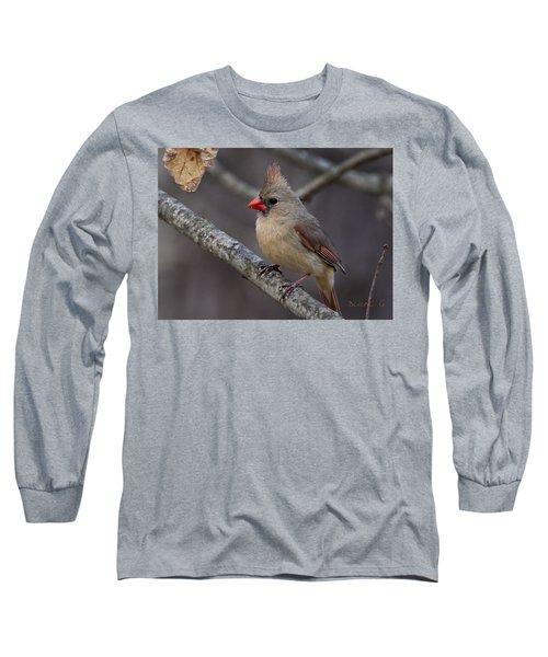 Female Cardinal Long Sleeve T-Shirt