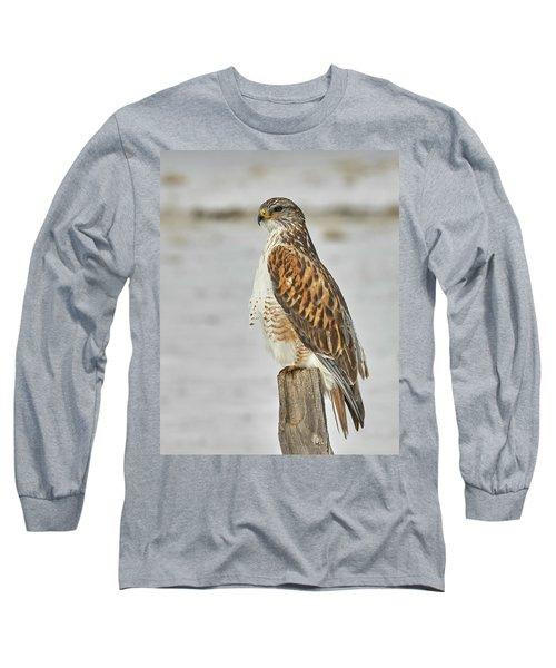 Ferruginous Hawk Long Sleeve T-Shirt by Doug Herr