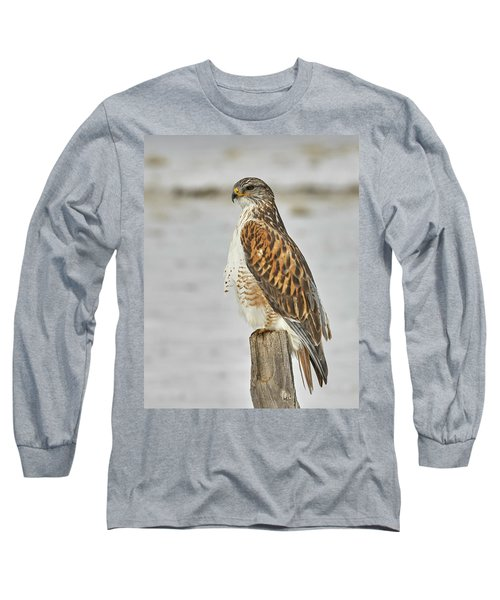 Ferruginous Hawk Long Sleeve T-Shirt