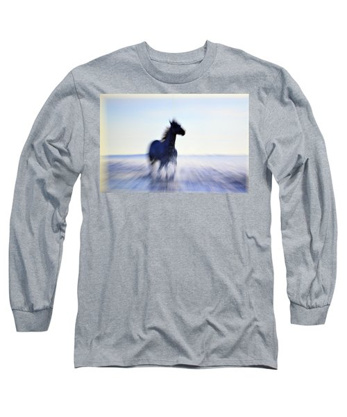 Freedom Long Sleeve T-Shirt by Allen Beilschmidt