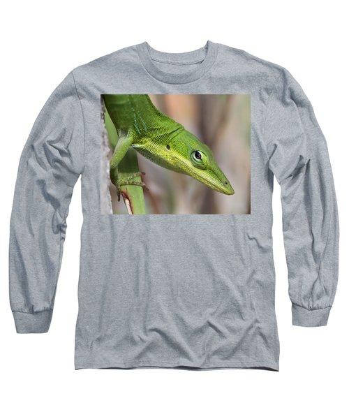 Long Sleeve T-Shirt featuring the photograph Green Beauty by Doris Potter