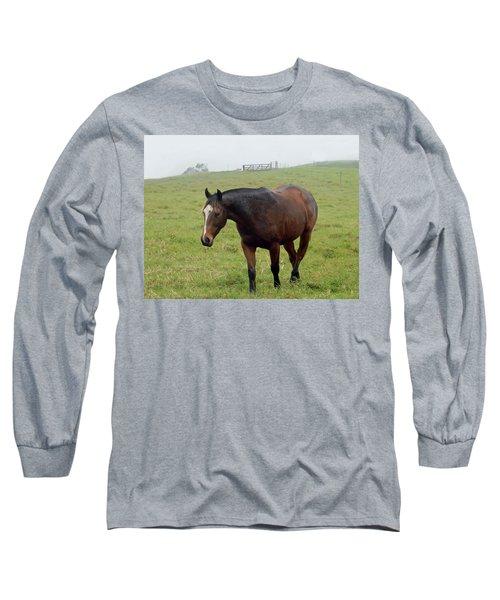 Horse In The Fog Long Sleeve T-Shirt