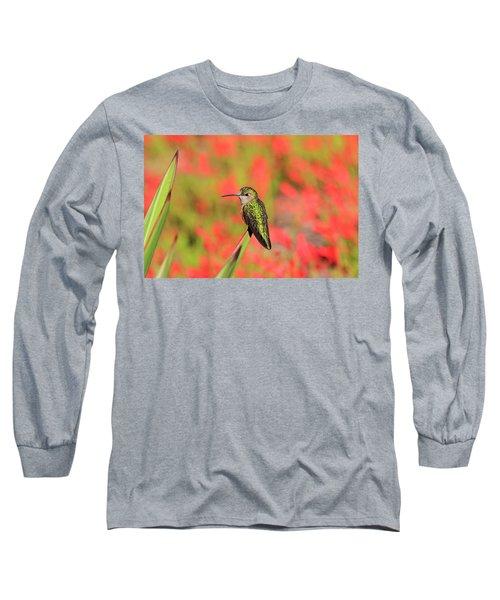 Hummingbird #5 Long Sleeve T-Shirt