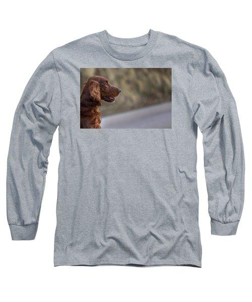 Irish Setter Long Sleeve T-Shirt by Robert Krajnc
