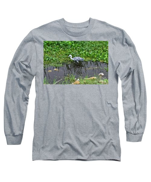 Long Sleeve T-Shirt featuring the photograph Looking For Lunch by Carol  Bradley