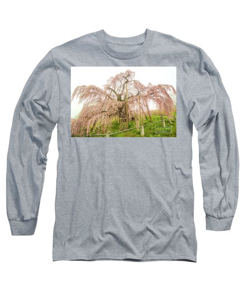 Miharu Takizakura Weeping Cherry02 Long Sleeve T-Shirt