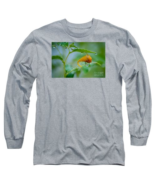 Morning Dew Long Sleeve T-Shirt by Patrick Shupert